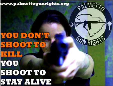 """We do not endorse, support, or oppose any candidate for political office.  We do not call for the election or defeat of any candidate for political office.  Palmetto Gun Rights seeks to inform gun owners, voters, and liberty activists in South Carolina on their candidates' positions on firearms issues.  The goal is to hold politicians accountable and achieve maximum liberty for an individual to defend himself, his family, and his property without having to ask government for permission to do so."" - Palmettogunrights.org"
